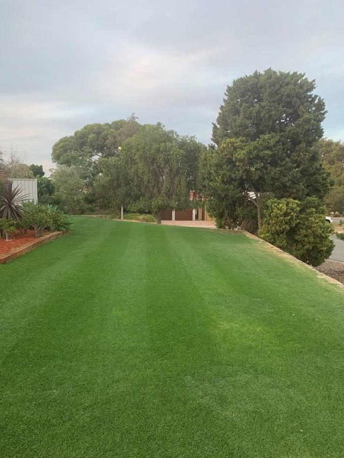 Lawn Mowing Perth