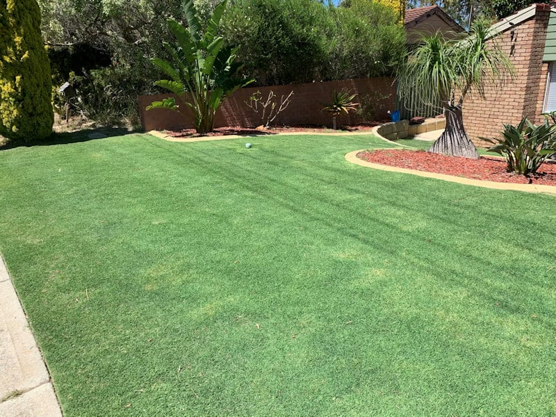 Lawn Mowing Services Perth