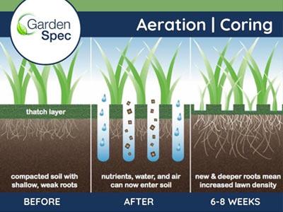 Lawn Aeration / Lawn Coring Perth WA